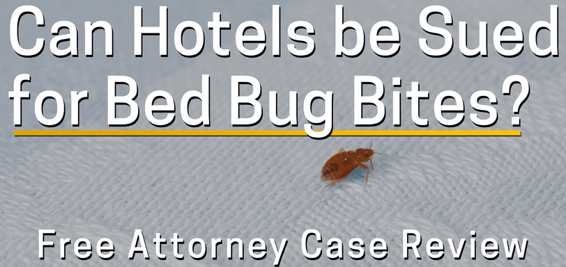 Can Sue Hotel Motel for Bed Bugs