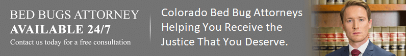 Bed Bug Lawyer Colorado