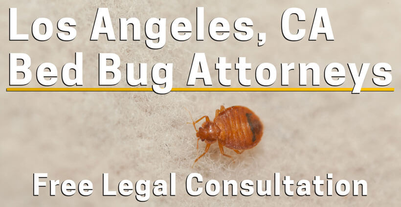 Bed Bug Attorney Los Angeles Bed Bug Lawyer
