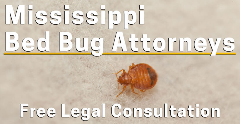 Bed Bug Lawyer Mississippi