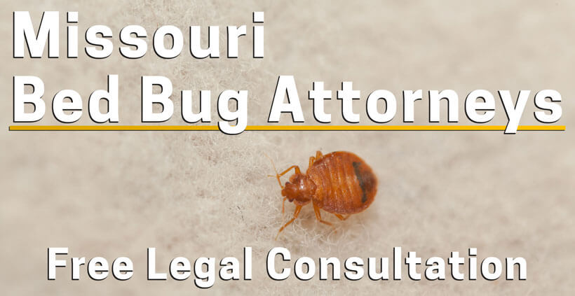 Bed Bug Lawyer Missouri