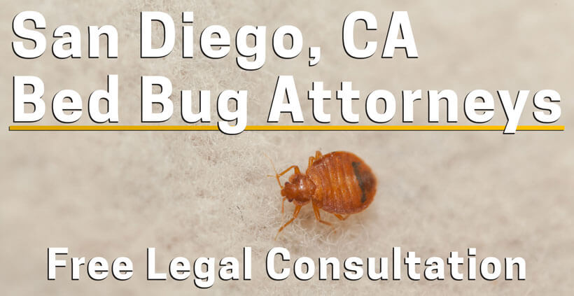 Bed Bug Attorney San Diego