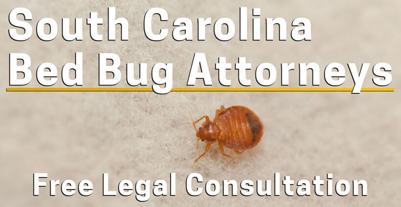Bed Bug Lawyer South Carolina