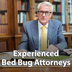 Lawyer for Bed Bug Infestation from Used Mattress Store