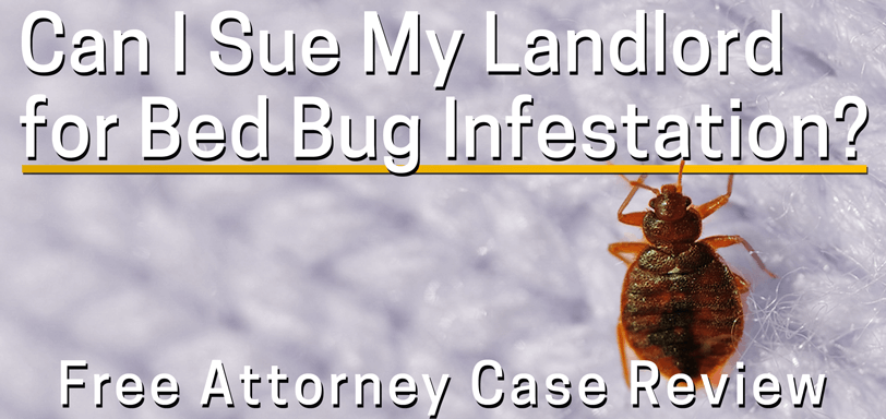 Can I sue my landlord for bed bugs?