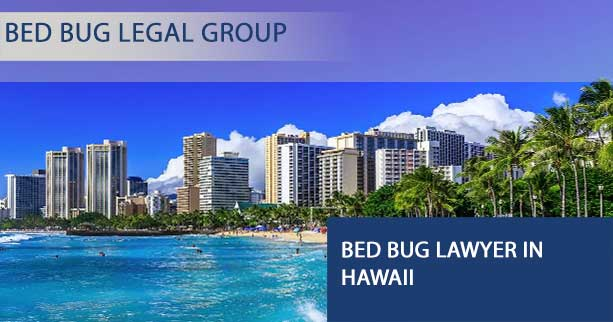 Bed Bug Lawyer in Hawaii