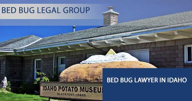 Bed Bug Lawyer in Idaho