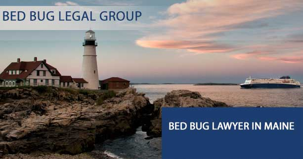 Bed Bug Lawyer in Maine