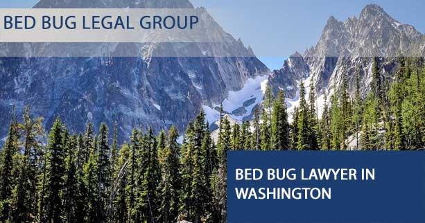 Bed Bug Lawyer in Washington