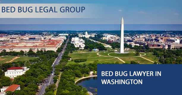 Bed Bug Lawyer in Washington