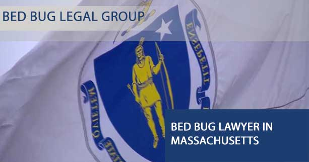 Bed Bug Lawyer in  Massachusetts