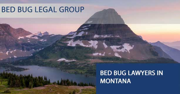 Bed Bug Lawyers in Montana