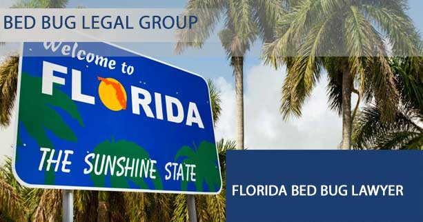 Florida Bed Bug Lawyer