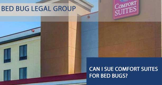 Can I sue Comfort Suites for Bed Bugs?