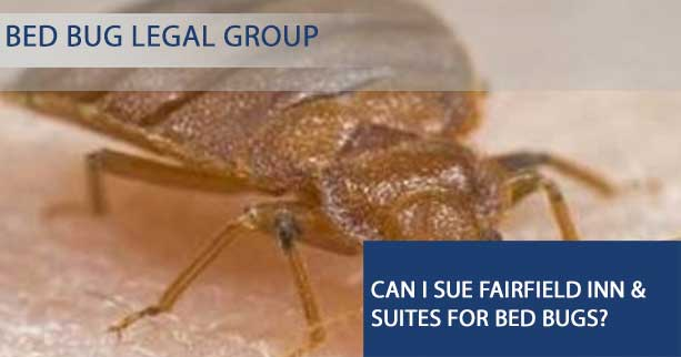 Can I Sue Fairfield Inn & Suites for Bed Bugs