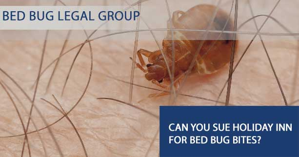 Can You Sue Holiday Inn for Bed Bug Bites?
