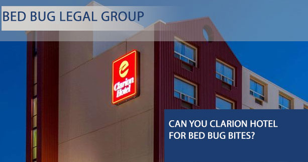 Can I Sue Clarion Hotel for Bed Bugs?