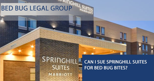 Can You Sue Springhill Suites for Bed Bug Bites?