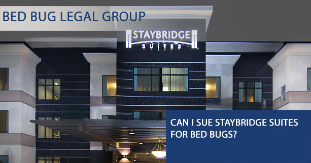 Can I Sue Staybridge Suites for Bed Bugs?