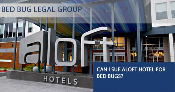 Can I Sue Aloft hotel for Bed Bugs?