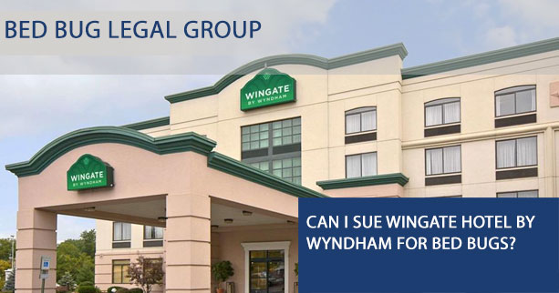 Can I sue Wingate Hotel by Wyndham for Bed Bugs?