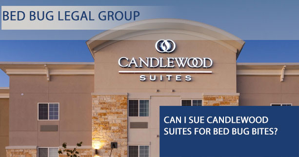 Can I Sue Candlewood Suites for Bed Bugs?