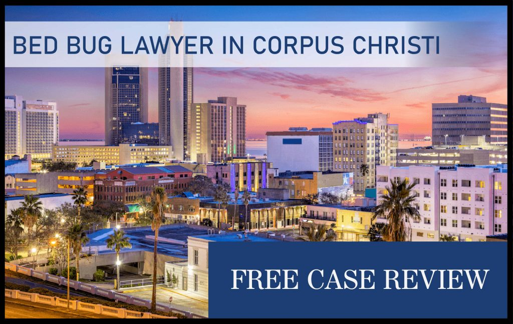 Hotel Bed Bug Lawyer in Corpus Christi, Texas sue compensation attorney