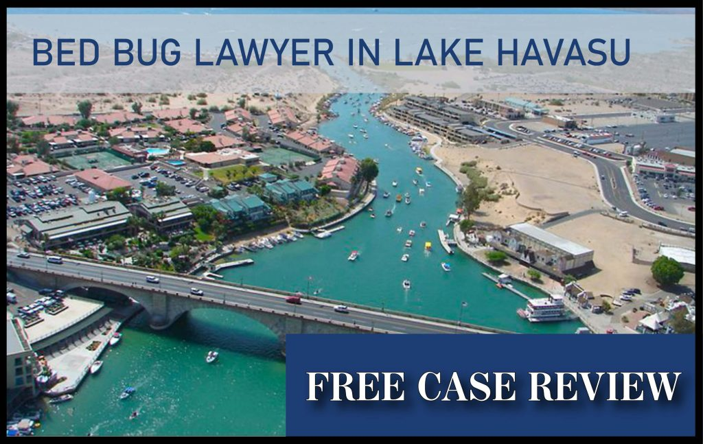 Lake Havasu City Bed Bug Injury Lawyer sue compensation