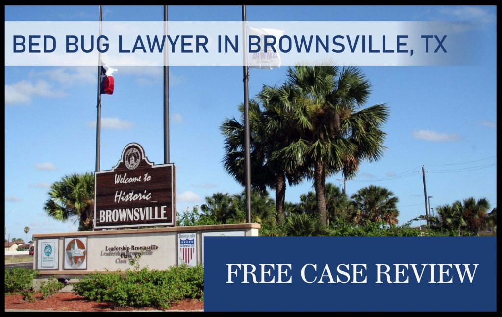 bed bug lawyer in brownsville texas attorney sue