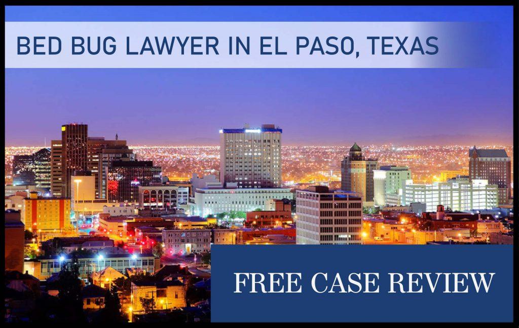 bug bug lawyer el paso texas attorney sue compensation